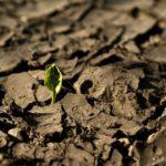 Risse im Boden, ein Bodengutachten ist lohnenswert