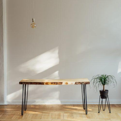 Energie - Lampe und Pflanze im Raum