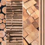Holzarten: Kaskadennutzung